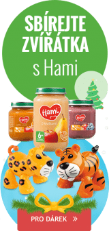2016120104-hami