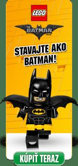 2017010906-lego; darek