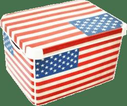 CURVER Pudełko do przechowywania USA L