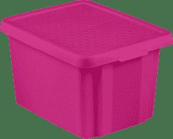 CURVER Pudełko do przechowywania z wiekiem Essentials 26l, fioletowe