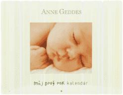 KNIHA Môj prvý rok kalendár (SK)