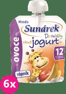 6xSUNÁREK Do ručičky s ovocím a jogurtom 80g