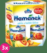 3x HAMÁNEK Dojčenská výživa Duopack Broskyňa 2ks + piškóty (6x190g)