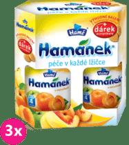 3x HAMÁNEK Dojčenská výživa Duopack Marhuľa 2ks + piškóty (6x190g)
