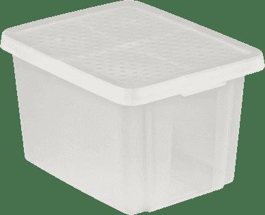 CURVER Pudełko do przechowywania z wiekiem Essentials 26l, przezroczyste